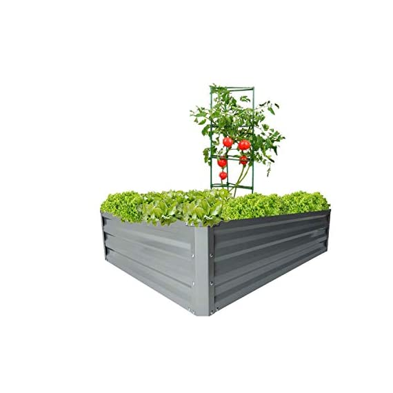 """zizin Galvanized Raised Garden Beds Kits Metal Elevated Planter Box Steel Vegetable Flower Bed Kit Bottomless for… 1 Anti-rust Galvanized Steel Planter Box: Metal raised garden bed Kit can stand the test of outdoor environment and time, not perishable and durable. Open-Bottom Garden Beds: Vegetable planter box prevents water from building up at its base,the root system of plants can grow naturally without any other restriction. Size: 47.2""""x35.4""""x11.8"""" (LxWxH), raised bed holds about 11 cubic feet soil, give the plants plenty of room to grow."""