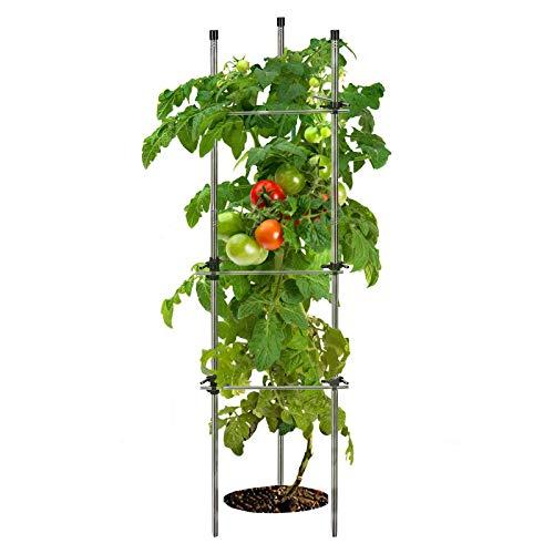 Ihomepark Tomato Cages, Stainless Steel Heavy Duty Adjustable Garden Tomato...