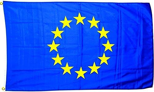 Fahne Flagge Europa 30 x 45 cm