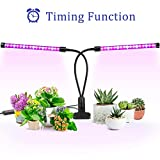 Ankace 40W LED grow lights