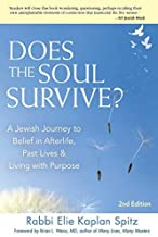 Does the Soul Survive? (2nd Edition): A Jewish Journey to Belief in Afterlife, Past Lives & Living with Purpose