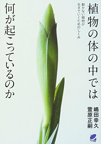 植物の体の中では何が起こっているのか (BERET SCIENCE)