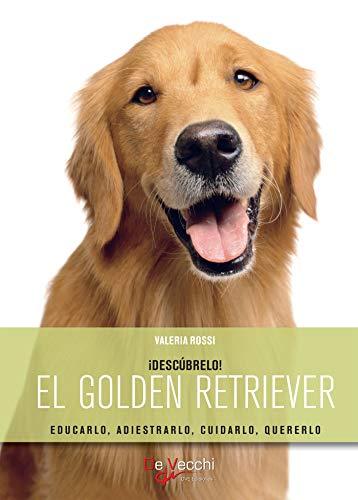 El golden retriever (Spanish Edition)