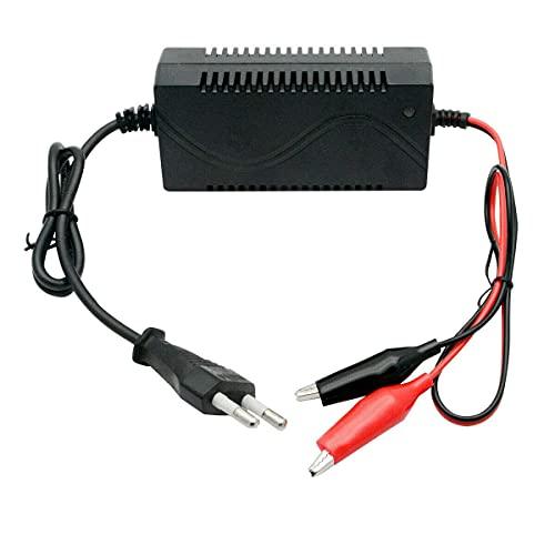 Riloer Cargador de Batería de Coche de Juguete, 6V 1A 5-10AH Mini Cargador de Ácido de Plomo Sellado Inteligente para Quad de Motocicleta de Coche de Juguete, Enchufe de la UE
