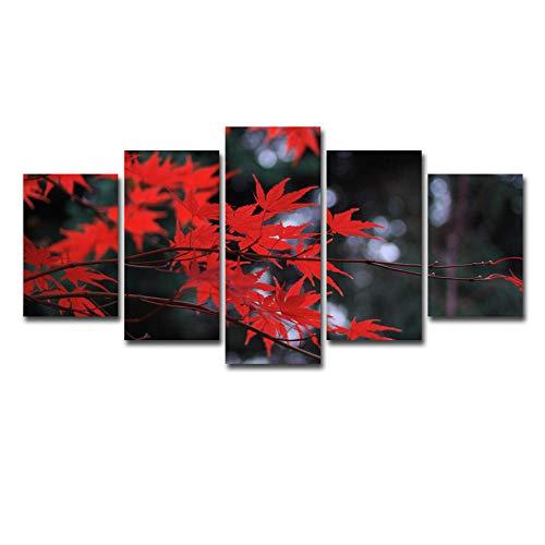 60Tdfc, trendy geschenk, 5 stuks, Hd foto's, wandschilderingen, woonkamer, behang, schilderij, affiche modern, rood als vuurahorn, decoratie, canvasprint, landschap, dieren, dieren