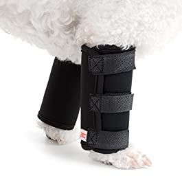 Ranphy Dog Front Leg Hock Joint Brace Canine Compression Wraps Sleeves for Wound Healing Injuiry Preventing Arthritis Recovering Pair