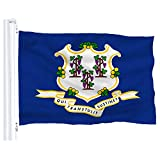 DFLIVE Connecticut US State Flag Banner 3Ft x 5Ft Polyester Printed with Grommets
