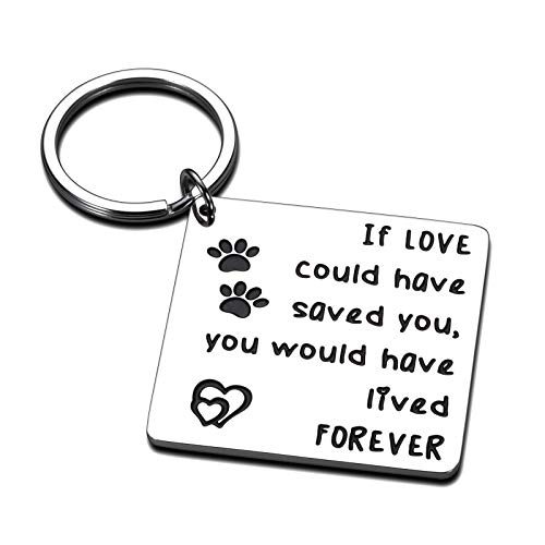 Cat Dog Memorial Gifts Keychain Loss of Dog Cat Gifts for Pet Owner Sympathy Gifts for Dogs Cat Jewelry Remembrance Gift, Paw Keychain