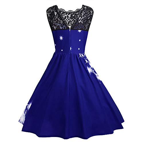 Vcenty Chrismtas Dresses for Women Sleeveless Lace Vintage Cocktail Dress Funny Printed Birthday Holiday Swing Party Dress Blue