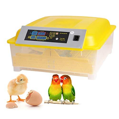 Couveuse Automatique de 48 œufs de Poules ou Canards à Affichage Digital de la température, Incubateur Automatique Mini LED et contrôle de l'humidité pour Couver Poule, Canard (48 œufs, Jaune Blanc)