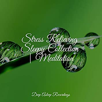 Stress Relieving Sleepy Collection   Meditation