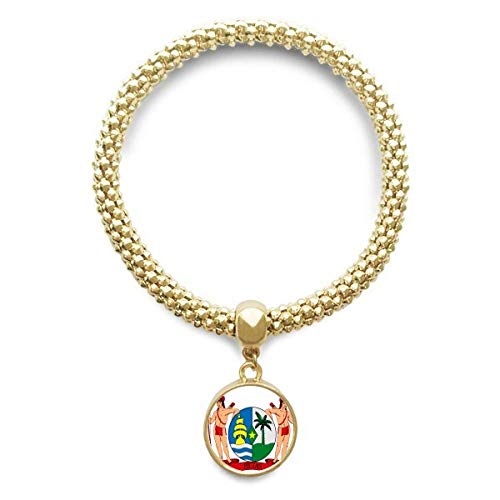 DIYthinker Womens Suriname Zuid-Ameica nationaal embleem gouden armband ronde hanger sieraden ketting