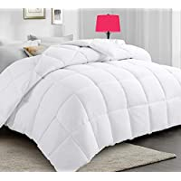 All-Season Queen Down Alternative Quilted Comforter (White)