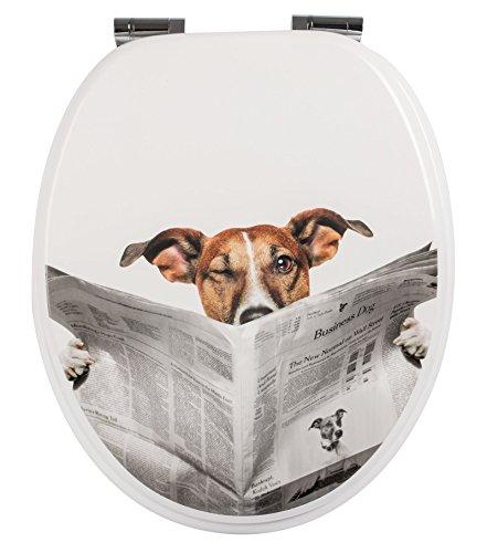 SITZPLATZ® WC-Sitz mit Absenkautomatik, lustiges Dekor Lesestoff, Toilettensitz mit Holz-Kern & Fast Fix Schnellbefestigung, universale O Form, mit Metallscharnieren, Toilettendeckel witzig, 40264 4