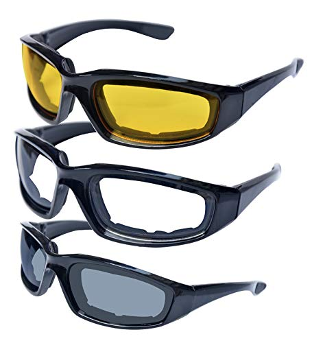 Killer Whale Men's Motorcycle Glasses, Riding...