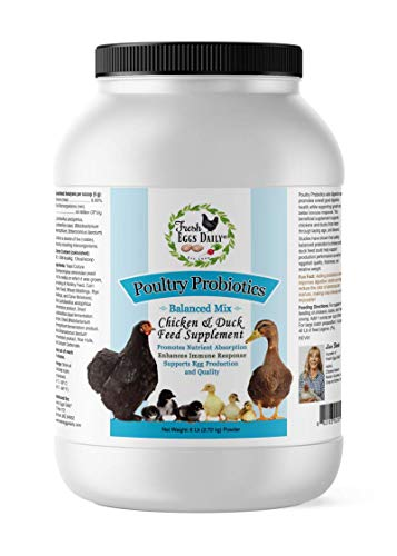 Fresh Eggs Daily Poultry Probiotics Chicken & Duck Feed Supplement 6LB
