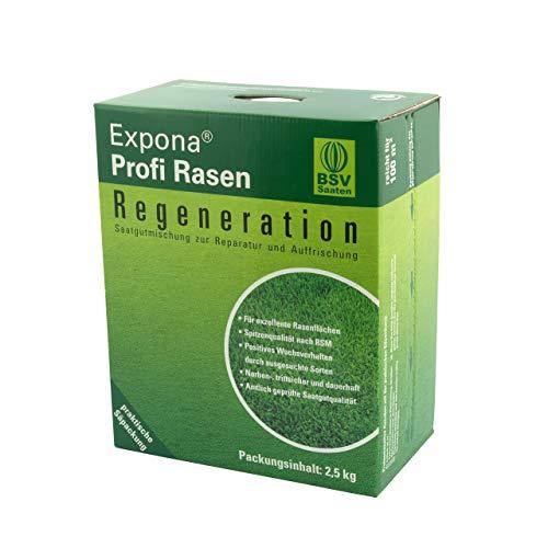 Regenerations-Rasen von EXPONA Profi Rasen für - Rasensaat zur Auffrischung zur Einsaat und Nachsaat - RSM 3.2 - schnelle Keimung - dichter und saftiger Rasen I 2,5kg für 100m²
