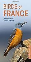 Birds of France (Pocket Photo Guides)