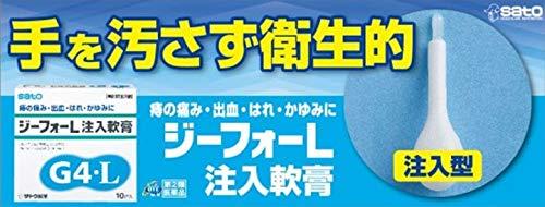 【指定第2類医薬品】ジーフォーL注入軟膏10個