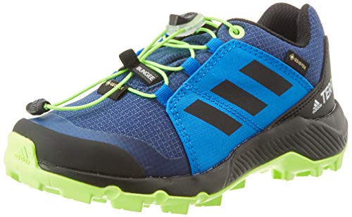adidas Unisex-Kinder Terrex GTX K Traillaufschuh, Tech Indigo/Core Black/Signal Green, 34 EU