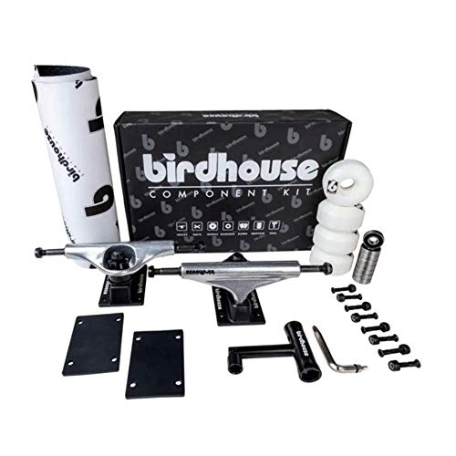 Birdhouse Kit Skate Component Kit 5.25 Silver/Black