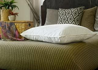 Almohada Rellena de Seda de Morera. 75cm x 50cm. Hipoalergé