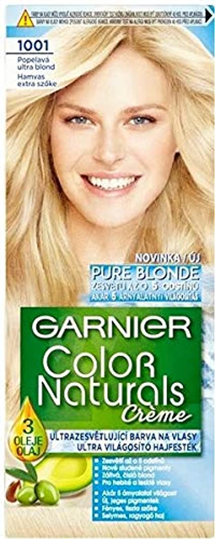時計無限大砦Garnier Color Naturals ロレアル 1001 Ultra Blond ブロンドヘアダイ