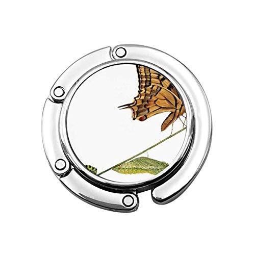 Niedliche Faltbare Geldbörse Kleiderbügel Geldbörse Haken Schwalbenschwanz Schmetterling Raupe Puppe Schmetterling Lebensphasen Inspirierende Natur
