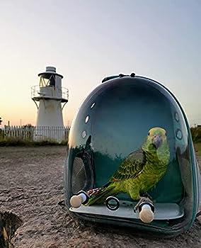 N/D Sac à dos de transport pour oiseaux avec plateau en acier inoxydable et perchoir debout