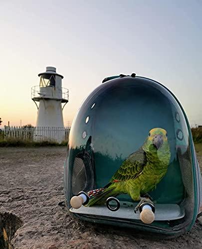 N/D Rucksack für Vögel, Bubble Bird Travel Carrier Rucksack mit Edelstahl-Tablett und Stehstange