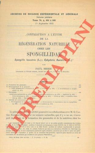 Contribution a' l'etude de la regeneration naturelle chez les Spongillidae Spongilla lacustris ( L. ) ; Ephydatia fluviatilis ( L. ) .