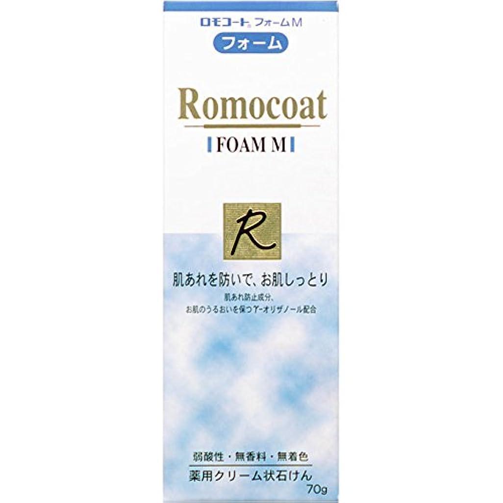 レキシコン征服合意全薬工業 ロモコート フォームM 70g (医薬部外品)