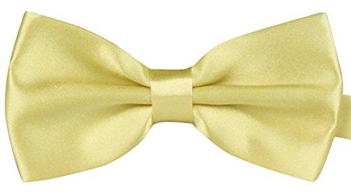 Panegy - Nœud papillon - Cravate lavallière - Homme Soirée Businesse Mariage Cérémonie Déco Fête Costume Necktie