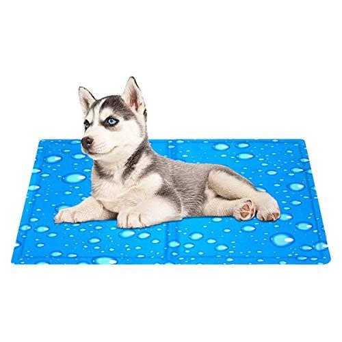 Queta Kühlmatte für Hunde, Haustier Kühlmatte, wasserdicht und reißfest, für Katzen und Hunde Selbstkühlende Matte, Blau (65 x 50 cm)