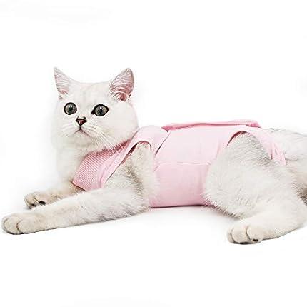 Dotoner Gatos Traje de recuperación Profesional para heridas Abdominales o Enfermedades de la Piel Alternativo para Gatos y Perros después de la cirugía Ropa para el hogar(Rosa,m)
