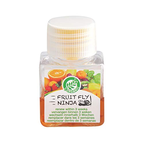 Fruit Fly Ninja - Fruit Fly Trap