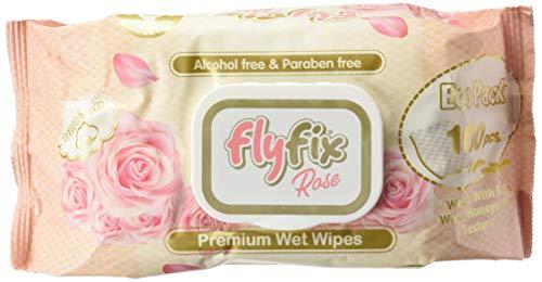 FlyFix TRFFXBD100022-6 - Toallitas Húmedas Fresh - 100 Pcs 6 paquetes, unisex