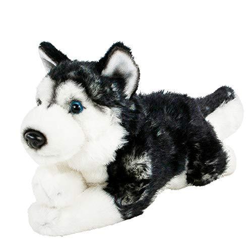 Teddys Rothenburg Peluche de husky siberiano tumbado, color negro y blanco, 30...