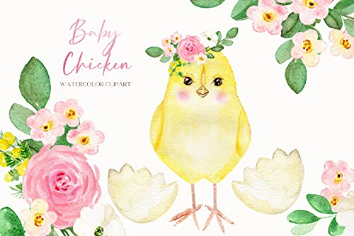 Baby Chicken. Watercolor Clipart for Nursery Art  Baby Shower. Farm Animals  Little Spring Chicken. Easter Flowers. Chicken Metal Signs for coop Funny 8x12 in