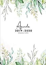 Amazon.com: Spanish - Flowers / Plants: Books
