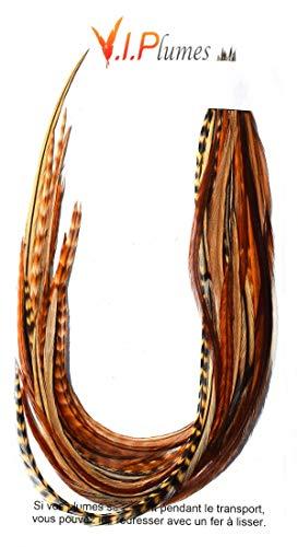 Pack Mix 25 Plumes Naturelles Out Of Africa: Extra-Longues (De 25 à 40 cm)