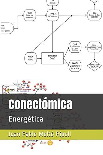 Conectómica: Energética