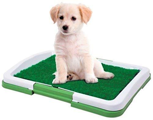 Dominiti Hundetoilette in grün Hundeklo Reisetoilette mit Pad für Hunde Kunstrasen Welpentoilette Toilette für Hunde Hundeklo