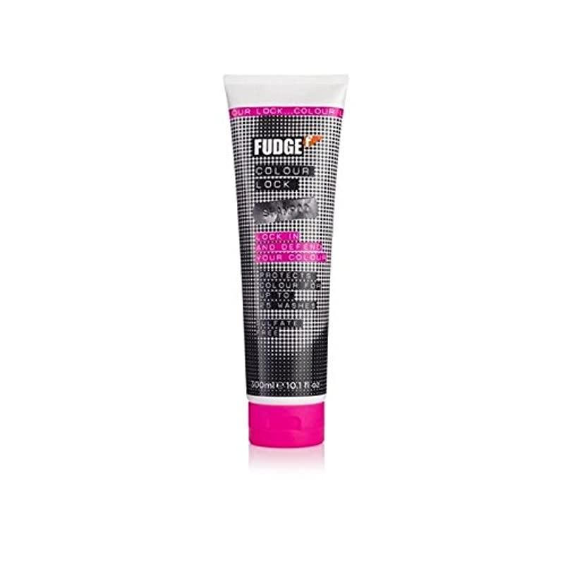 やむを得ない篭鳴り響くファッジ色ロックシャンプー(300ミリリットル) x2 - Fudge Colour Lock Shampoo (300ml) (Pack of 2) [並行輸入品]