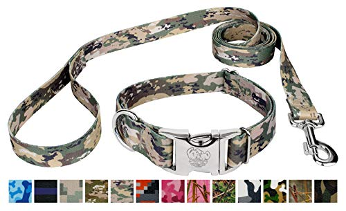 Top 14 marines dog collar for 2021