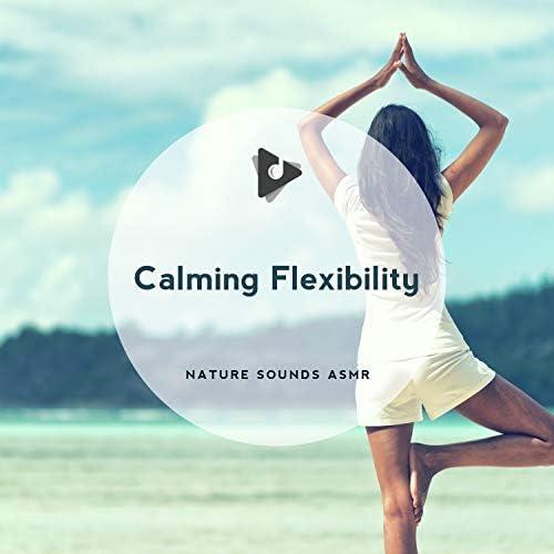 Nature Sounds ASMR, Yoga Workout Music & ASMR Zen Garden