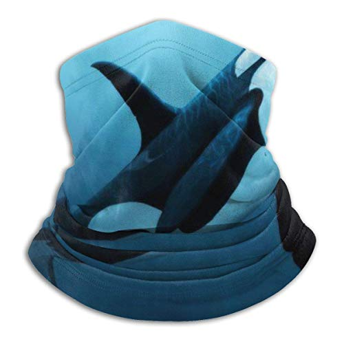 IZOU The Dreamer Orca Neck Gaiter Face Mask,Multifunction for Man Women seasons Magic Scarf Bandana Balaclava