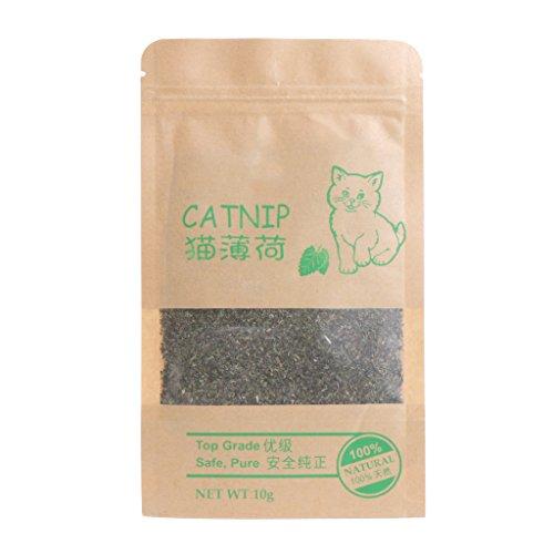 YU-HELLO 10 g Natural Catnip para la limpieza de los dientes Premium Orgánico de Gato Sabor Mentol Divertido Juguetes Tratos