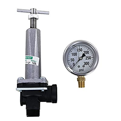 TeeJet 8460-3/4 Pressure Regulator with 300 PSI Pressure Gauge (Bundle, 2 Items) from TeeJet