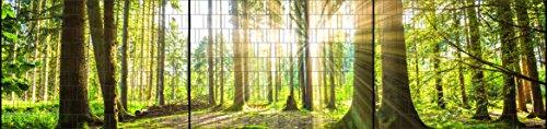 Riesen Panorama Zaun - bedruckte Sichtschutzstreifen für Doppelstabmattenzaun mit großen Panorama Motiv (XXL (3 Zaundfelder), Wald)